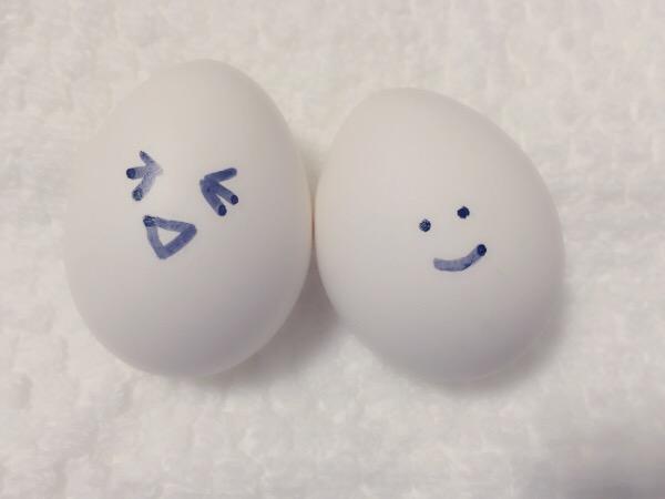 卵は1日1個まで??