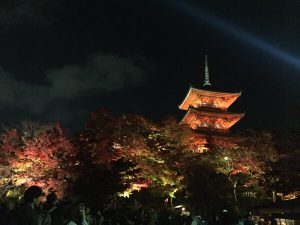 京都の紅葉とオススメのお店。