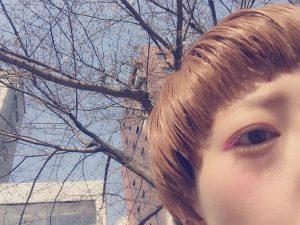 春はピンク仕様に♪たまには公園でお散歩(^○^)