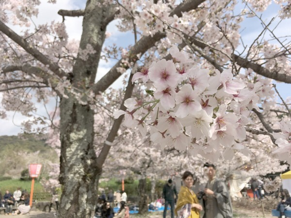 大渡京都旅に出る。